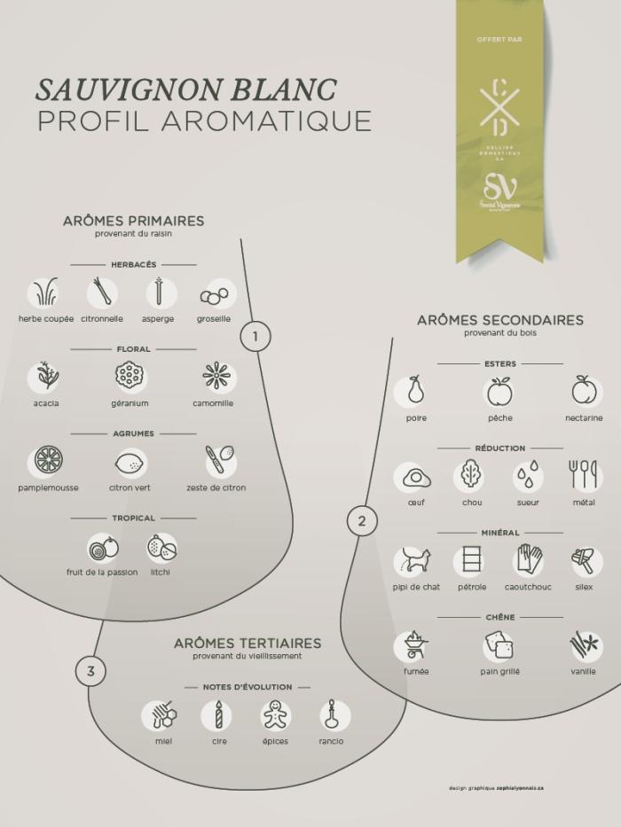profil-aromatique-sauvignon-blanc